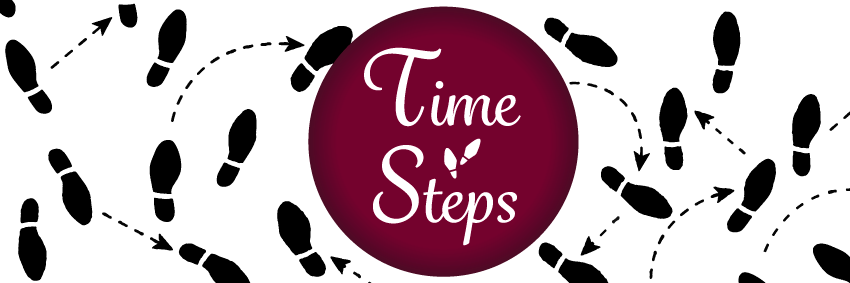 Time Steps